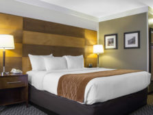 A modern bed rests in the room of the Comfort Inn with side tables, wood backboard, and Colorado-inspired decor.